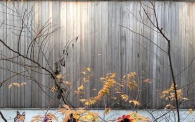 韓国訪問 三十時間滞在記其ノ四 現代建築