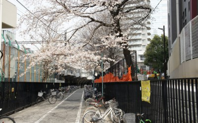 新東横線渋谷駅の影響