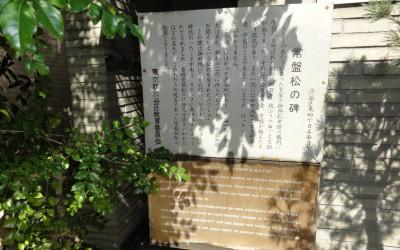 更新:ヴィンテージマンションアーカイブ(渋谷・常磐松)