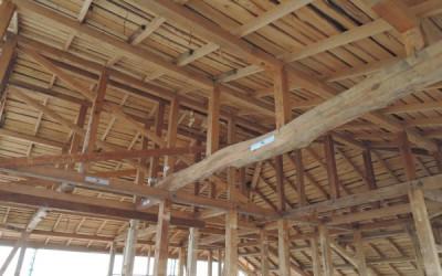 木造戸建てリノベーション 進捗報告