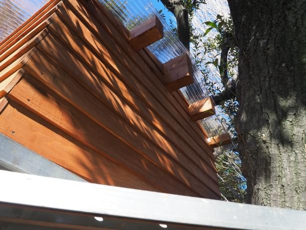 塗装後のツリーハウス