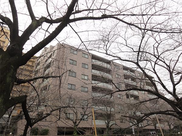 クレッセント目黒青葉台1